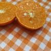 Obrus w pomarańczową kratę  1x1 cm